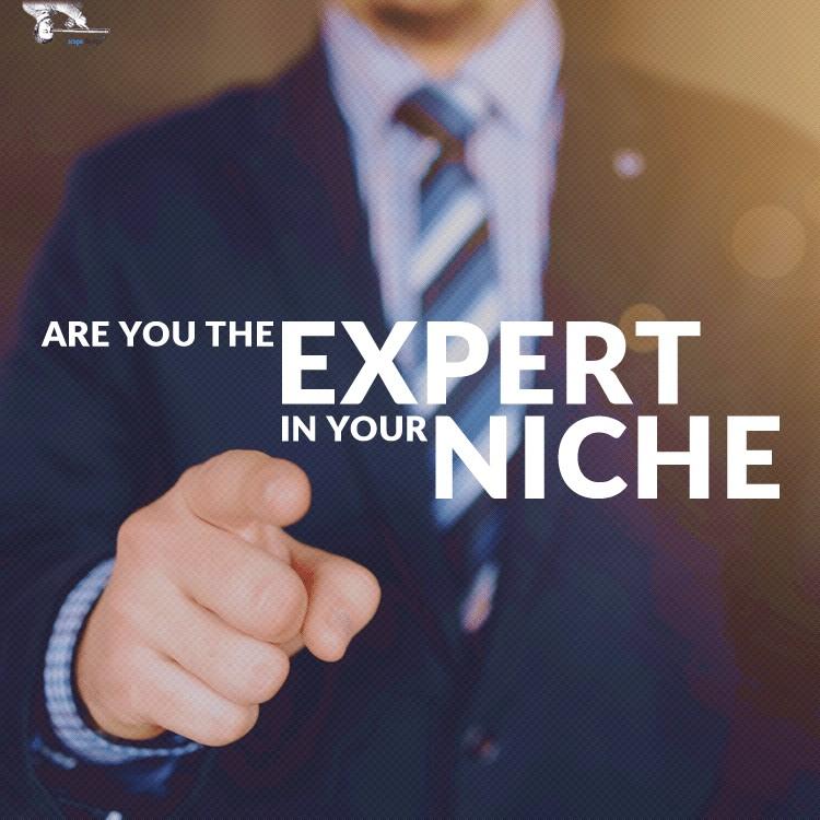 NicheExpertMaterialFeature